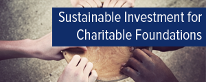 Topic of the month May 2016: Sustainable Investment for Charitable Foundations