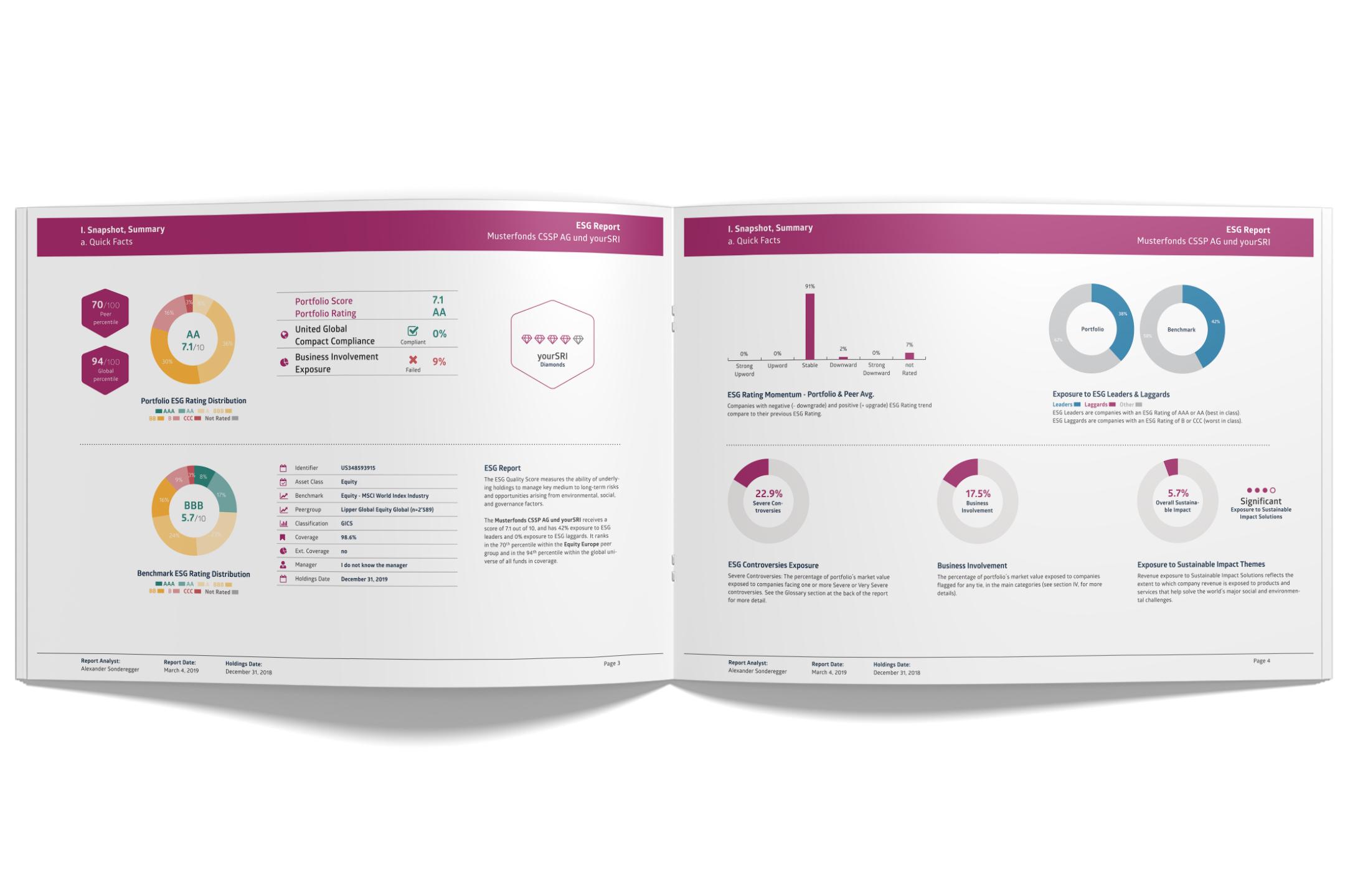 ESG & Controversies Screening_Screenshot Online.png