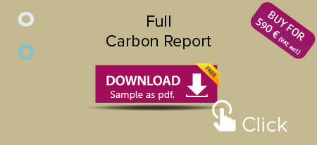 Full-Carbon-Sample-Report-Download_450x206.jpg