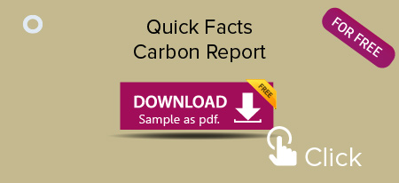 Quick-Facts-Carbon-Report-Sample-Download_450x206.jpg